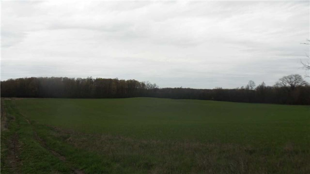 Vacant Land at 17511 Loyalist Pkwy, Prince Edward County, Ontario. Image 3