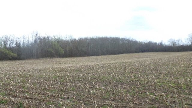 Vacant Land at 17511 Loyalist Pkwy, Prince Edward County, Ontario. Image 4