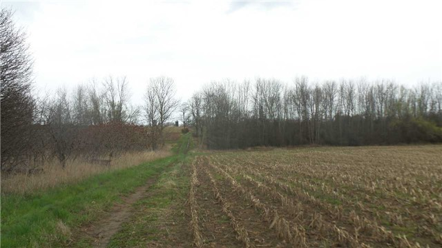 Vacant Land at 17511 Loyalist Pkwy, Prince Edward County, Ontario. Image 5