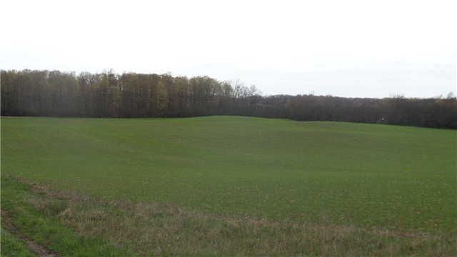 Vacant Land at 17511 Loyalist Pkwy, Prince Edward County, Ontario. Image 7