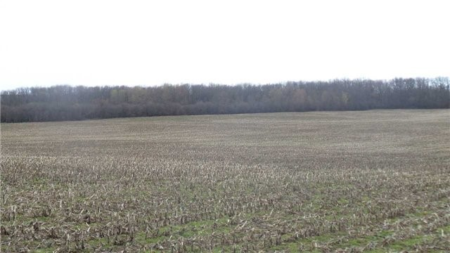 Vacant Land at 17511 Loyalist Pkwy, Prince Edward County, Ontario. Image 9
