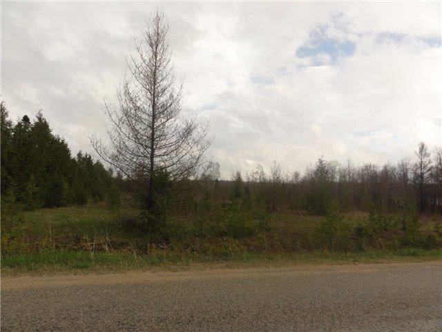 Vacant Land at C10  Southgate Rd 24 Rd, Southgate, Ontario. Image 3