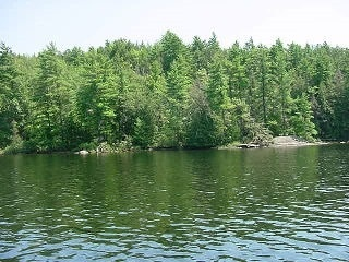 Vacant Land at 0 Blade Island, Galway-Cavendish and Harvey, Ontario. Image 2