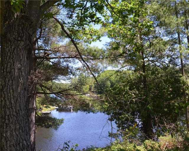 Cottage at 1 Island 1, Havelock-Belmont-Methuen, Ontario. Image 6