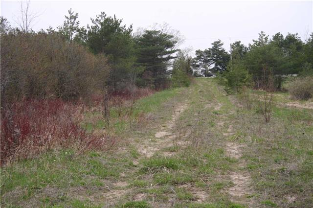 Vacant Land at Lot 29 Con 2, Amaranth, Ontario. Image 1