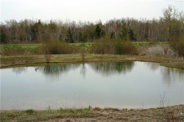 Vacant Land at Lot 29 Con 2, Amaranth, Ontario. Image 7