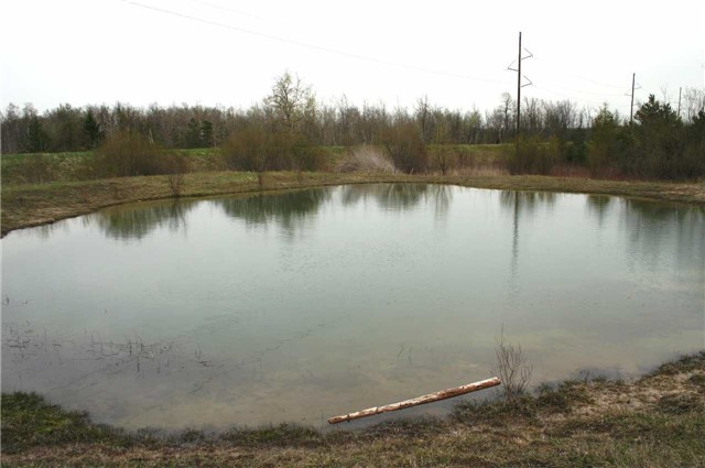 Vacant Land at Lot 29 Con 2, Amaranth, Ontario. Image 8