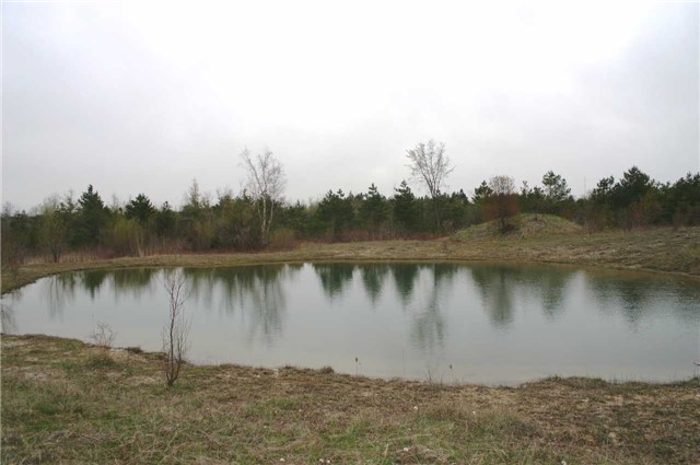 Vacant Land at Lot 29 Con 2, Amaranth, Ontario. Image 9