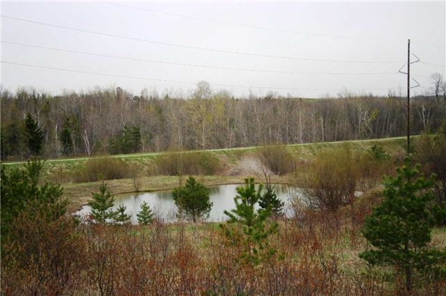 Vacant Land at Lot 29 Con 2, Amaranth, Ontario. Image 10