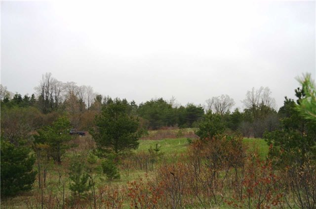 Vacant Land at Lot 29 Con 2, Amaranth, Ontario. Image 11