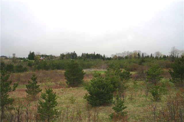 Vacant Land at Lot 29 Con 2, Amaranth, Ontario. Image 2