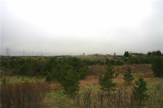 Vacant Land at Lot 29 Con 2, Amaranth, Ontario. Image 3