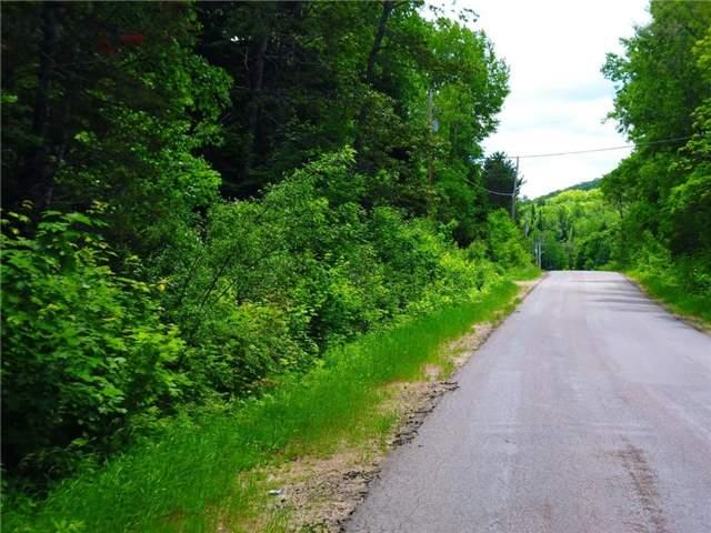 Vacant Land at 0 Clement Lake  Rd, Highlands East, Ontario. Image 1