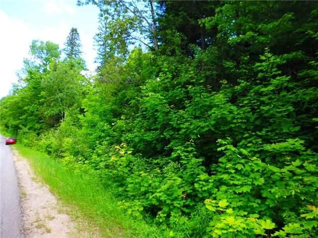 Vacant Land at 0 Clement Lake  Rd, Highlands East, Ontario. Image 2