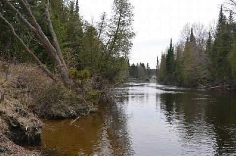 Vacant Land at 46 Kozy Kove Rd, Kawartha Lakes, Ontario. Image 2