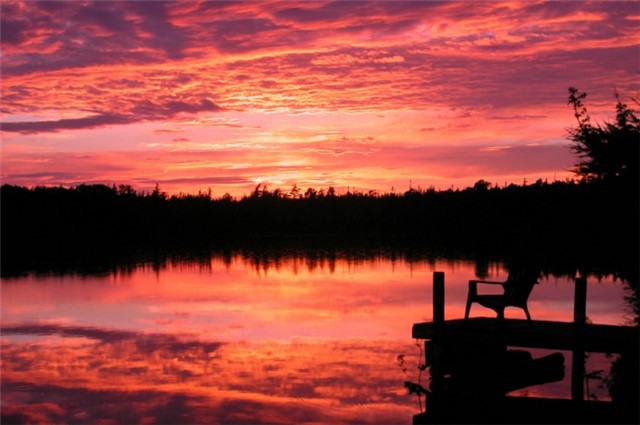Vacant Land at L17 Greenough Point Rd, Northern Bruce Peninsula, Ontario. Image 6