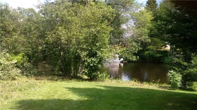 Vacant Land at Lot 11 Shuttleworth Rd, Kawartha Lakes, Ontario. Image 1