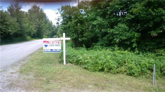 Vacant Land at Lot 11 Shuttleworth Rd, Kawartha Lakes, Ontario. Image 3