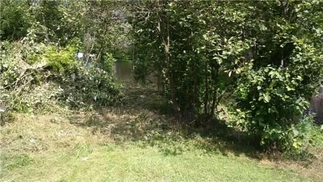 Vacant Land at Lot 11 Shuttleworth Rd, Kawartha Lakes, Ontario. Image 6