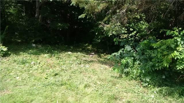 Vacant Land at Lot 11 Shuttleworth Rd, Kawartha Lakes, Ontario. Image 8
