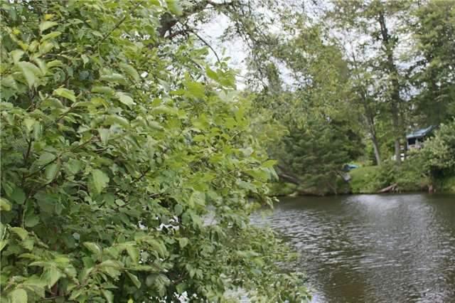 Vacant Land at Lot 11 Shuttleworth Rd, Kawartha Lakes, Ontario. Image 9