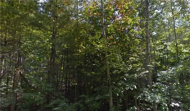 Vacant Land at Lot 20 20th Sdrd, Mulmur, Ontario. Image 1