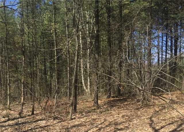 Vacant Land at Lot 20 20th Sdrd, Mulmur, Ontario. Image 2