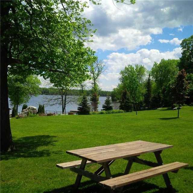 Cottage at 6 Goldrock Rd, Kawartha Lakes, Ontario. Image 10
