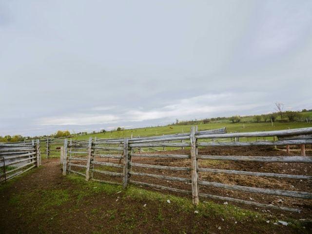 Vacant Land at 0 Portage Rd, Kawartha Lakes, Ontario. Image 1