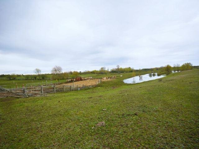 Vacant Land at 0 Portage Rd, Kawartha Lakes, Ontario. Image 5
