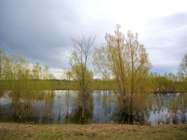 Vacant Land at 0 Portage Rd, Kawartha Lakes, Ontario. Image 8
