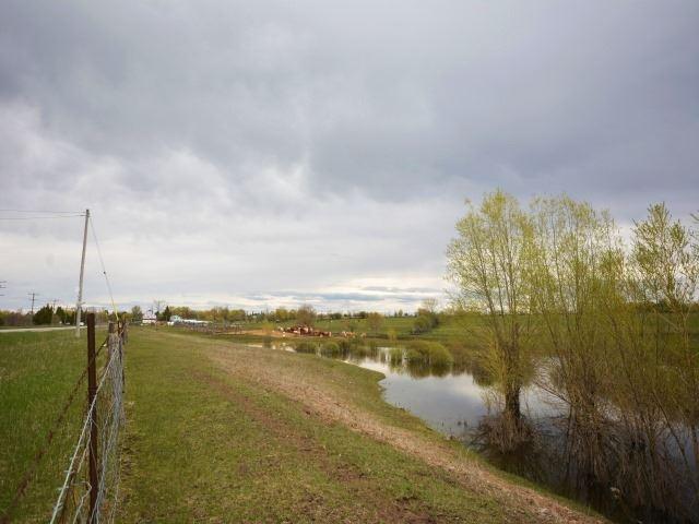 Vacant Land at 0 Portage Rd, Kawartha Lakes, Ontario. Image 10