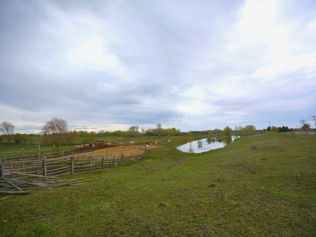 Vacant Land at 0 Portage Rd, Kawartha Lakes, Ontario. Image 12
