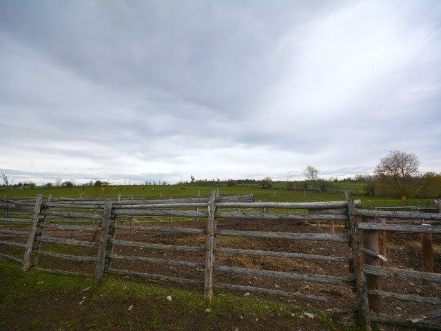 Vacant Land at 0 Portage Rd, Kawartha Lakes, Ontario. Image 3