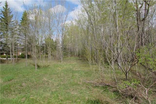 Vacant Land at 0 Rabys Shore Dr, Kawartha Lakes, Ontario. Image 2