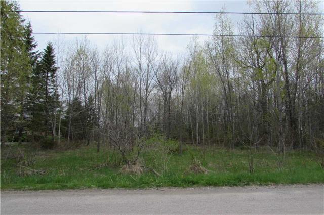 Vacant Land at 0 Rabys Shore Dr, Kawartha Lakes, Ontario. Image 4