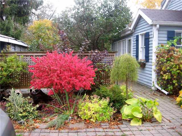 Detached at 235 Water St, Cobourg, Ontario. Image 12