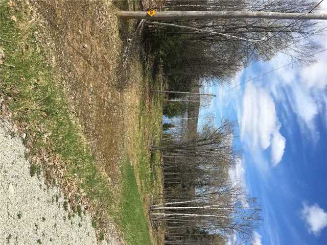 Detached at Lot 4 Limerick Lake Sdrd, Limerick, Ontario. Image 2