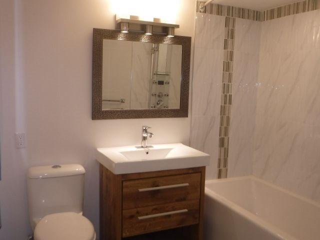 Condo Apartment at 40 Landry St, Unit 914, Ottawa, Ontario. Image 7