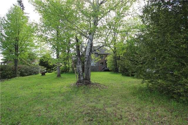 Detached at 66 Thompson Lane, Kawartha Lakes, Ontario. Image 9