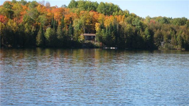 Cottage at 105 King Rd, Wollaston, Ontario. Image 1