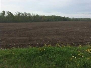 Vacant Land at 097472 4th Sw Line, Melancthon, Ontario. Image 6