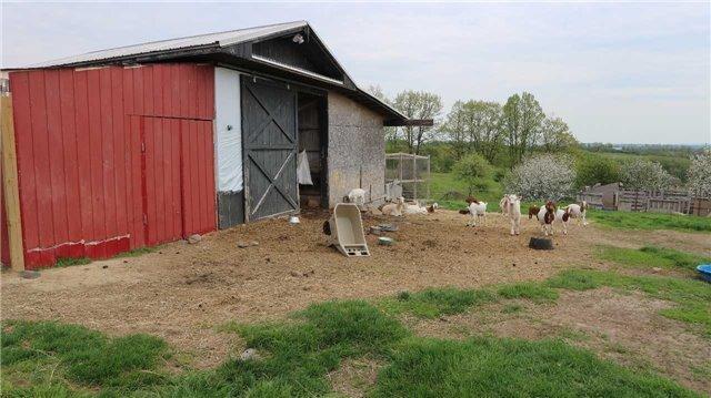 Farm at 1007 Deyell Line, Cavan Monaghan, Ontario. Image 15