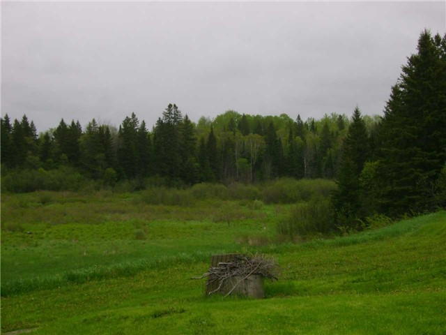 Rural Residence at 8538 Highway 522, Muskoka Lakes, Ontario. Image 3