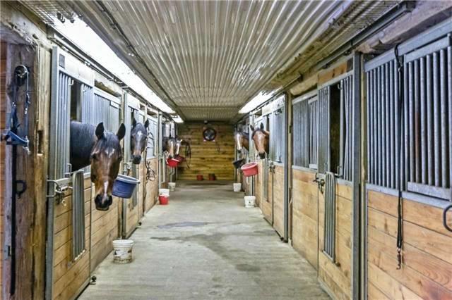 Farm at 345 Freelton Rd, Hamilton, Ontario. Image 15