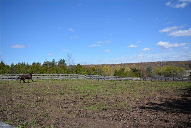 Farm at 345 Freelton Rd, Hamilton, Ontario. Image 13