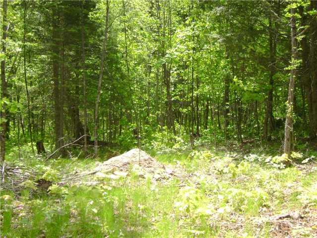 Vacant Land at Lot 12 Hilltop Rd, Muskoka Lakes, Ontario. Image 2