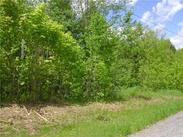 Vacant Land at Lot 12 Hilltop Rd, Muskoka Lakes, Ontario. Image 4