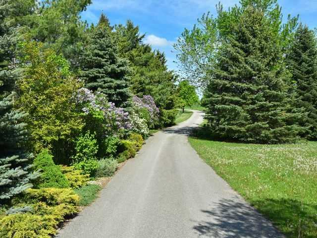 Detached at 5992 Eighth Line, Erin, Ontario. Image 18