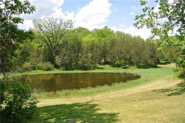 Detached at 6308 County Road 50, Trent Hills, Ontario. Image 5